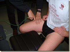 Muscletempexperiment 013