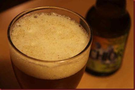 Xmas Beer 2010 Alvinne Melchior foam2 800