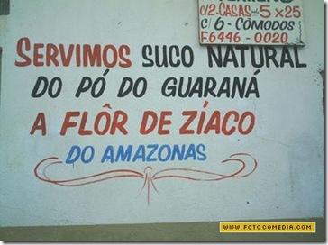 Placa A Flor de Zíaco