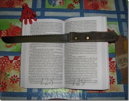 2010-04-19 Gambiarra literária 02