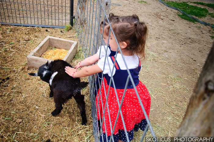 Goats! Children Photography
