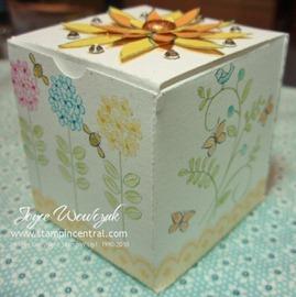 sab box a2