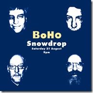 Snowdrop flyer