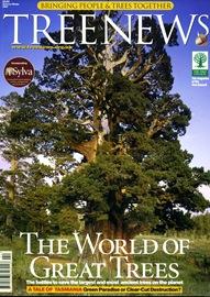 TREE NEWS88