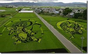rice-art09