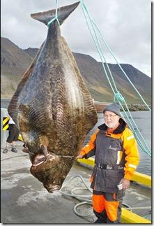 Ikan hasil pancingan