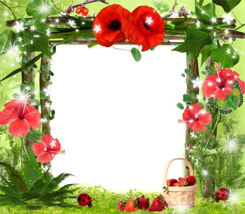 صور خامات  و اطارات للفوتوشوب Strawberries%20and%2