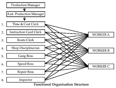 functional organisation structure