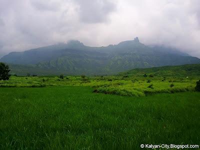 Haji Malang Foothill