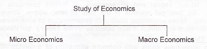 study of economics micro macro