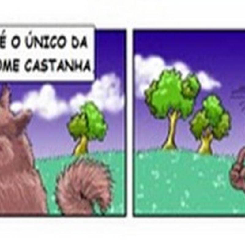 Esquilo - Humor