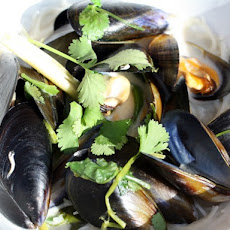 Dinner for Two: Coconutty Mussels with Ginger, Lemongrass, Chili, and Cilantro on Rice Noodles