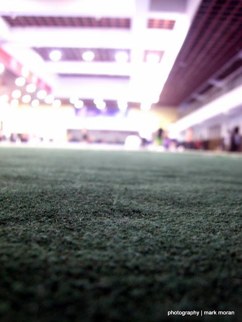 Carpet view