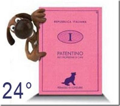 Patentino-cani24