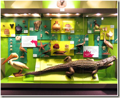 The Discovery Gallery