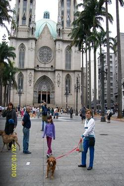 Cãonhecendo São Paulo (208)