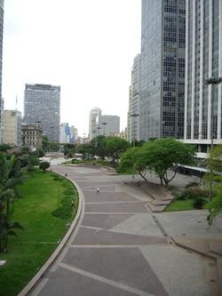 Cãonhecendo São Paulo (263)
