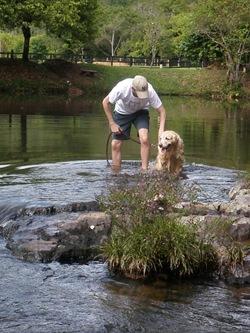 Dogs Trekking 3 (351)