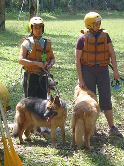 Pet's Adventure 3 (104)