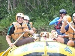 Pet's Adventure 3 (150)