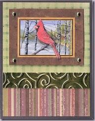 cardinal20110329