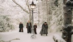 The Chronicles of Narnia The Lion, the Witch and the Wardrobe (2005)4