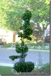 treeshape