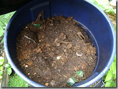 """finished"" compost"