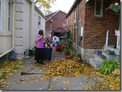 garden fall 002