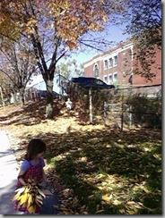fall walk 2