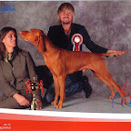 CELJE EUROPEAN DOG SHOW-SLOVENIA-2010-10-01g.jpg
