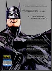 Batman - Guerra contra el crimen2