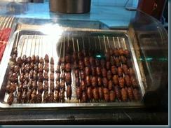 Snails and Locusts Beijing