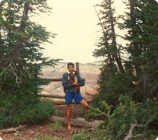 cedar breaks age 15 maybe copy