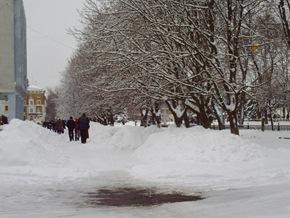 Snow. the feb 10 036