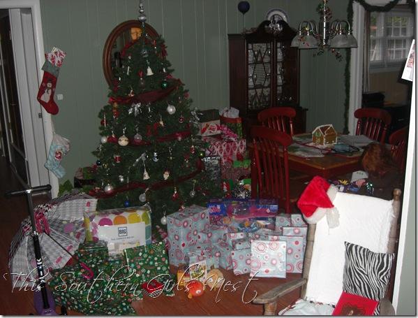 december 2009 022