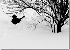 MD Snow