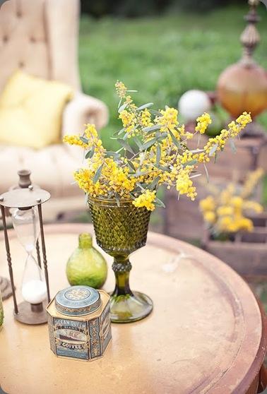 erinbrent10 mimosa JL Designs