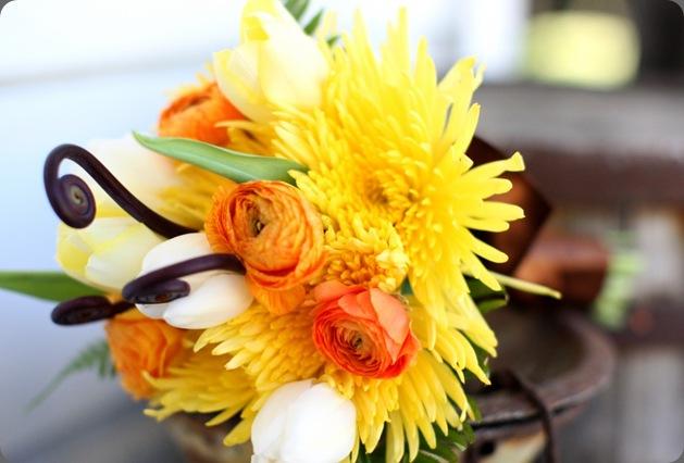 MARTIN0040-1024x682 panacea flowers