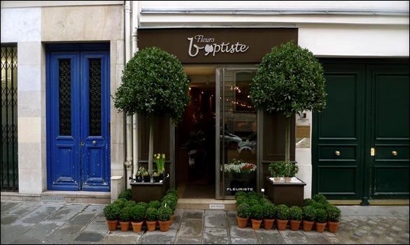 p1000103 fleurs Baptiste