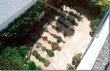 crack_garden3