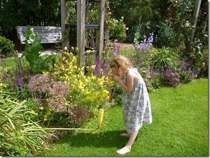 11 chch botanic gardens