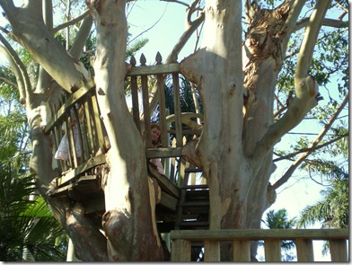 22 maca treehouse
