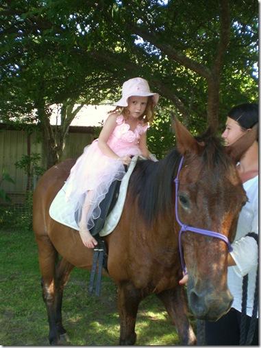 20 sarah bday horse