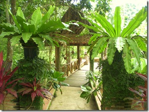 32 garden