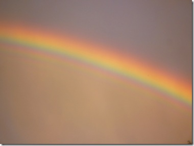 15 rainbow
