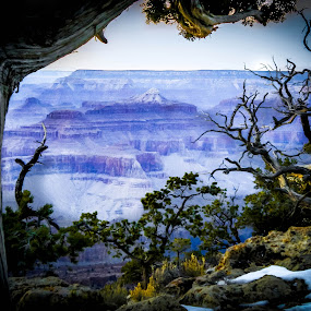 Grand Canyon Vista by Hoover Tung - Landscapes Mountains & Hills ( famous place, desert, mountain, majestic, scenics, cliff, eroded, journey, canyon, rock, sunlight, landscape, sun, grand canyon, geology, southwest usa, sky, nature, outdoors, snow, at the edge of, arizona, trees, , Free, Freedom, Inspire, Inspiring, Inspirational, Places, People, Emotion, noordhoek, south africa, noordhoekchallenge, colorful, mood factory, vibrant, happiness, January, moods, emotions, inspiration, renewal, green, forests, natural, scenic, relaxing, meditation, the mood factory, mood, jade, revive, inspirational, earthly, relax, tranquil, tranquility )