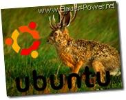 Ubuntu 9.04 Jaunty Jackelope