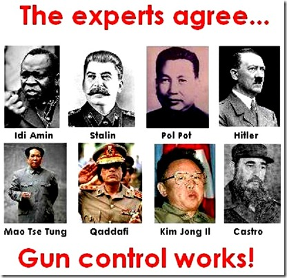 Experts Agree - Gun Control Works