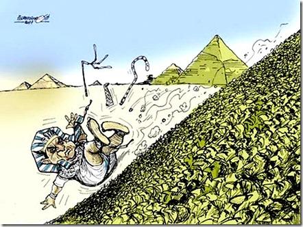 Mubarak Resigns toon